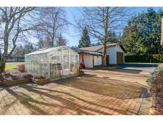 """Photo 18: 24570 52 Avenue in Langley: Salmon River House for sale in """"North Otter / Salmon River"""" : MLS®# R2136174"""