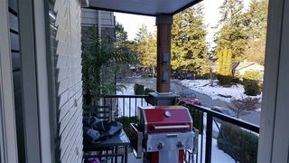 "Photo 8: 213 2990 BOULDER Street in Abbotsford: Abbotsford West Condo for sale in ""WESTWOOD"" : MLS®# R2139460"