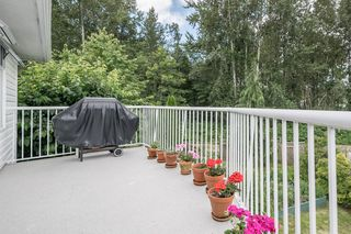 Photo 27: 2371 MARSHALL Avenue in Port Coquitlam: Mary Hill House for sale : MLS®# R2184318