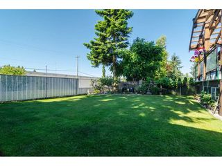 Photo 19: 11482 85 Avenue in Delta: Annieville House for sale (N. Delta)  : MLS®# R2186367