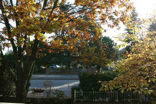 "Photo 15: 219 9626 148 Street in Surrey: Guildford Condo for sale in ""HARTFORD WOODS"" (North Surrey)  : MLS®# R2220302"