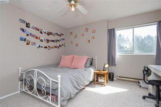 Photo 12: 306 1525 Hillside Avenue in VICTORIA: Vi Oaklands Condo Apartment for sale (Victoria)  : MLS®# 389283