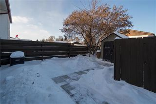 Photo 19: 699 McMeans Avenue East in Winnipeg: East Transcona Residential for sale (3M)  : MLS®# 1901928