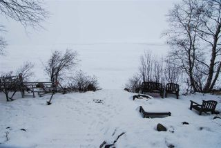 Photo 21: 209 Grandview: Rural Wetaskiwin County House for sale : MLS®# E4141538