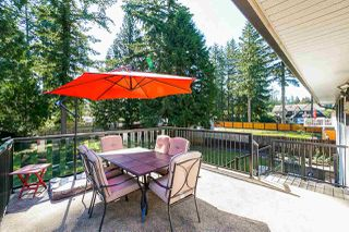 "Photo 17: 4072 202A Street in Langley: Brookswood Langley House for sale in ""Brookswood"" : MLS®# R2379406"