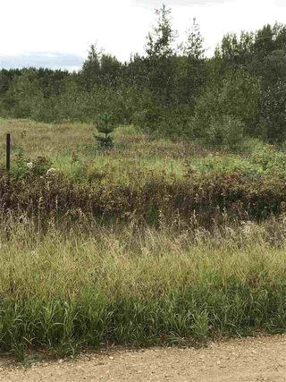 Photo 3: 233 TWP RD 602: Rural Westlock County Rural Land/Vacant Lot for sale : MLS®# E4172532