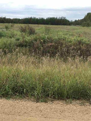 Photo 2: 233 TWP RD 602: Rural Westlock County Rural Land/Vacant Lot for sale : MLS®# E4172532