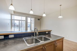 Photo 18: 209 10531 117 Street in Edmonton: Zone 08 Condo for sale : MLS®# E4189795