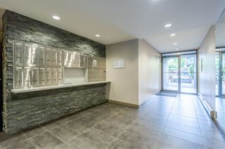 Photo 7: 102 288 E 14TH Avenue in Vancouver: Mount Pleasant VE Condo for sale (Vancouver East)  : MLS®# R2478776