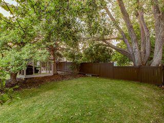 Photo 39: 444 CEDARILLE Crescent SW in Calgary: Cedarbrae Detached for sale : MLS®# A1026165