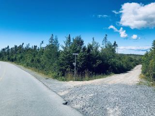 Photo 5: Lot 2D 38 Allie Lane in Whites Lake: 40-Timberlea, Prospect, St. Margaret`S Bay Vacant Land for sale (Halifax-Dartmouth)  : MLS®# 202017988
