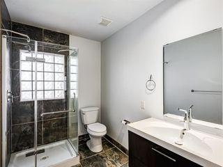 Photo 13: 217 24 Avenue NE in Calgary: Tuxedo Park Detached for sale : MLS®# A1054572