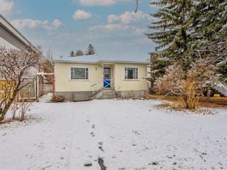 Main Photo: 217 24 Avenue NE in Calgary: Tuxedo Park Detached for sale : MLS®# A1054572
