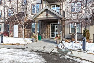 Photo 2: 211 37 Prestwick Drive SE in Calgary: McKenzie Towne Apartment for sale : MLS®# A1055114