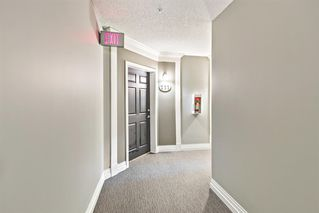Photo 5: 211 37 Prestwick Drive SE in Calgary: McKenzie Towne Apartment for sale : MLS®# A1055114