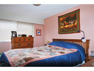 Photo 6: 21741 HOWISON AV in Maple Ridge: West Central House for sale : MLS®# V942196