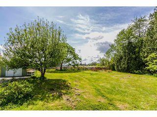 "Photo 7: 11363 240 Street in Maple Ridge: Cottonwood MR House for sale in ""COTTONWOOD DEVLEOPMENT AREA"" : MLS®# R2062453"