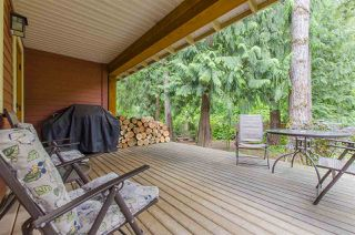Photo 13: 43516 RED HAWK Pass in Chilliwack: Lindell Beach House for sale (Cultus Lake)  : MLS®# R2083849