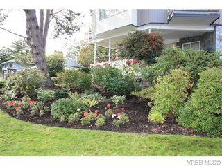 Photo 12: 211 1400 Newport Ave in VICTORIA: OB South Oak Bay Condo for sale (Oak Bay)  : MLS®# 743837