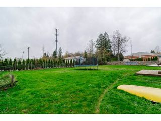 "Photo 17: 26340 30A Avenue in Langley: Aldergrove Langley House for sale in ""Aldergrove"" : MLS®# R2123457"