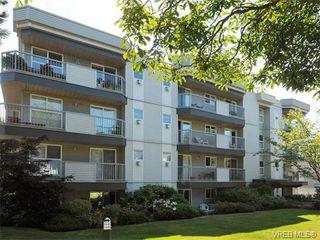 Photo 13: 104 445 Cook Street in VICTORIA: Vi Fairfield West Condo Apartment for sale (Victoria)  : MLS®# 373848