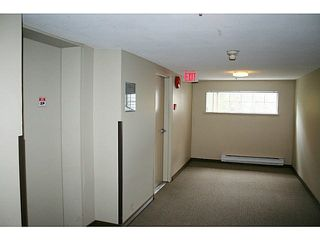 "Photo 13: 405 11671 FRASER Street in Maple Ridge: East Central Condo for sale in ""BEL-MAR TERRACE"" : MLS®# R2138887"
