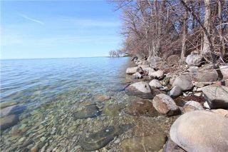 Photo 8: 1688 Lakeshore Drive in Ramara: Rural Ramara Property for sale : MLS®# S3763412