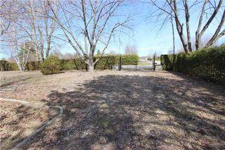 Photo 11: 1688 Lakeshore Drive in Ramara: Rural Ramara Property for sale : MLS®# S3763412