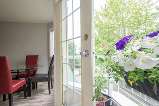 Photo 19: 201 558 ROCHESTER Avenue in Coquitlam: Coquitlam West Condo for sale : MLS®# R2179518