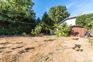 Photo 4: 1174 Craigflower Road in VICTORIA: Es Kinsmen Park Revenue Duplex for sale (Esquimalt)  : MLS®# 382906