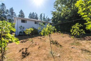 Photo 5: 1174 Craigflower Road in VICTORIA: Es Kinsmen Park Revenue Duplex for sale (Esquimalt)  : MLS®# 382906