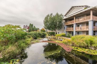 "Photo 19: 305 5600 ANDREWS Road in Richmond: Steveston South Condo for sale in ""THE LAGOONS"" : MLS®# R2209894"