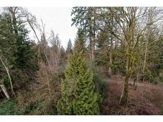 "Photo 18: 408 33328 E BOURQUIN Crescent in Abbotsford: Central Abbotsford Condo for sale in ""Nature's Gate"" : MLS®# R2235279"