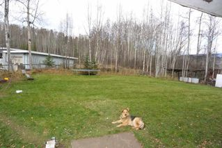 Photo 20: 5251 N 1ST Avenue: Hazelton Agri-Business for sale (Smithers And Area (Zone 54))  : MLS®# C8017722