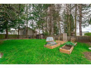 Photo 6: 15719 16 Avenue in Surrey: Sunnyside Park Surrey House for sale (South Surrey White Rock)  : MLS®# R2249136