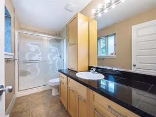 Photo 14: 3134 267A Street in Langley: Aldergrove Langley House 1/2 Duplex for sale : MLS®# R2284390