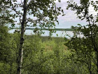 Photo 17: 624 Rge Rd 251: Rural Athabasca County Rural Land/Vacant Lot for sale : MLS®# E4137881
