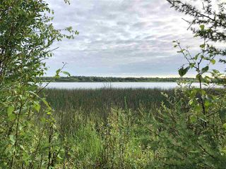 Photo 20: 624 Rge Rd 251: Rural Athabasca County Rural Land/Vacant Lot for sale : MLS®# E4137881