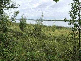 Photo 21: 624 Rge Rd 251: Rural Athabasca County Rural Land/Vacant Lot for sale : MLS®# E4137881