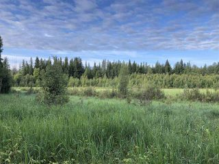 Photo 26: 624 Rge Rd 251: Rural Athabasca County Rural Land/Vacant Lot for sale : MLS®# E4137881