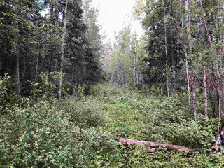 Photo 24: 624 Rge Rd 251: Rural Athabasca County Rural Land/Vacant Lot for sale : MLS®# E4137881