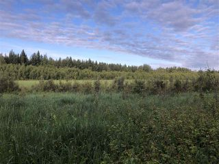 Photo 25: 624 Rge Rd 251: Rural Athabasca County Rural Land/Vacant Lot for sale : MLS®# E4137881