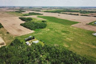 Photo 7: 49279 RR250: Rural Leduc County Rural Land/Vacant Lot for sale : MLS®# E4141338