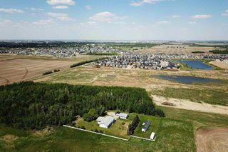 Photo 13: 49279 RR250: Rural Leduc County Rural Land/Vacant Lot for sale : MLS®# E4141338