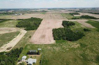 Photo 4: 49279 RR250: Rural Leduc County Rural Land/Vacant Lot for sale : MLS®# E4141338