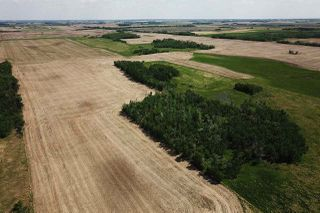 Photo 8: 49279 RR250: Rural Leduc County Rural Land/Vacant Lot for sale : MLS®# E4141338