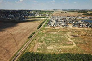 Photo 1: 49279 RR250: Rural Leduc County Rural Land/Vacant Lot for sale : MLS®# E4141338