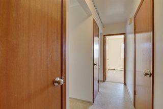 Photo 9: 31 10640 108 Street in Edmonton: Zone 08 Condo for sale : MLS®# E4143492