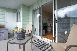 """Photo 14: 115 31850 UNION Avenue in Abbotsford: Abbotsford West Condo for sale in """"FERNWOOD MANOR"""" : MLS®# R2400262"""