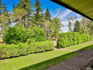 Photo 8: 2 215 Evergreen St in PARKSVILLE: PQ Parksville Row/Townhouse for sale (Parksville/Qualicum)  : MLS®# 823726